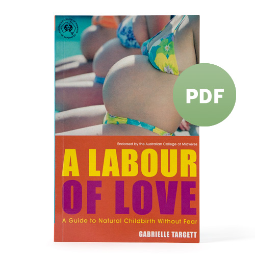 A-Labour-of-Love-pdf